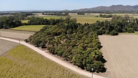 Rural / Farming commercial property for sale at 47061 Bruce Highway Ingham QLD 4850