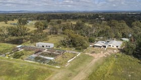Rural / Farming commercial property for sale at 1268 Spring Creek  Road Mudgee NSW 2850