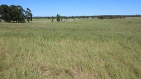 Rural / Farming commercial property for sale at 0 Blackwell Road Naracoorte SA 5271