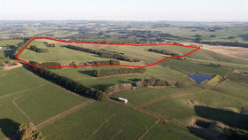 Rural / Farming commercial property for sale at 1131 Cooriemungle Rd Cooriemungle VIC 3268