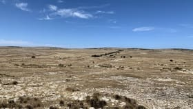 Rural / Farming commercial property for sale at Section 41 Hundred of Ward Elliston SA 5670
