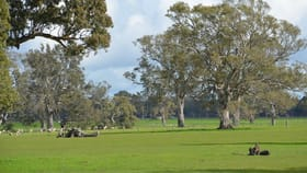 Rural / Farming commercial property for sale at Section 398 Jessie Road Naracoorte SA 5271