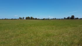 Rural / Farming commercial property for sale at Lot 3783 Jamieson Road Capel WA 6271