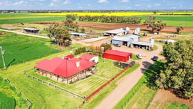 Rural / Farming commercial property for sale at 50 Elliott Road Lockington VIC 3563