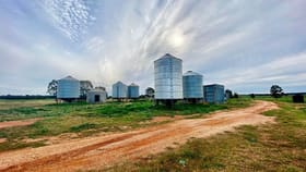 Rural / Farming commercial property for sale at 1 ?Euligal? Condobolin NSW 2877