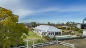 Rural / Farming commercial property for sale at 836 Pittsworth Felton Road Pittsworth QLD 4356