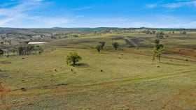 Rural / Farming commercial property for sale at 235 Clifton Road Pittsworth QLD 4356