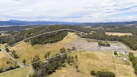 Rural / Farming commercial property for sale at Lot 1 Hjorts Road Loira TAS 7275
