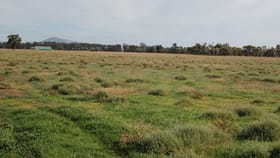 Rural / Farming commercial property for sale at 2496A WIRRINYA ROAD Forbes NSW 2871