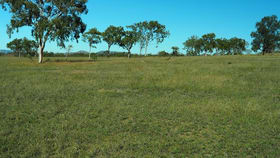 Rural / Farming commercial property for sale at 0 Malchi-Nine Mile Road Gracemere QLD 4702