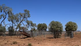 Rural / Farming commercial property for sale at Part Gloming Bedgerebong Road Forbes NSW 2871