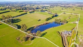 Rural / Farming commercial property for sale at 84 Solomons Road Lillico VIC 3820