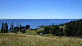 Rural / Farming commercial property for sale at 581 Penguin Road Penguin TAS 7316
