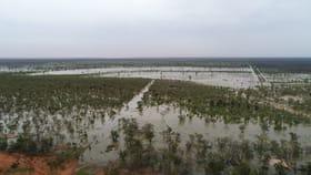 Rural / Farming commercial property for sale at Devine - Oratara Pastoral Property Portfolio Dirranbandi QLD 4486