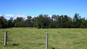 Rural / Farming commercial property for sale at 101 Hansen Tunglebung Road Casino NSW 2470