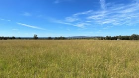 Rural / Farming commercial property for sale at 195 Lowes Peak Road Mudgee NSW 2850