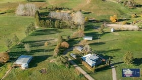 Rural / Farming commercial property for sale at 264 Lachlan Valley Way Bowning NSW 2582