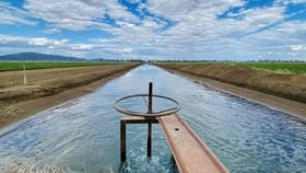 "Rural / Farming commercial property for sale at ""Bindaree North"" 554 Kelvin Rd Gunnedah NSW 2380"