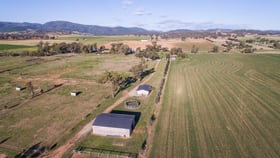 """Rural / Farming commercial property for sale at """"Glenlui""""/1265 Manilla Rd Hallsville NSW 2340"""
