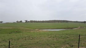 Rural / Farming commercial property for sale at 1088A New England Gully Rd Moonbi NSW 2353