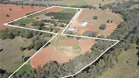 Rural / Farming commercial property for sale at 9 The Pines The McGrane Way Tullamore NSW 2874