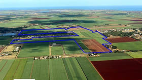 Rural / Farming commercial property for sale at BARGARA ROAD Qunaba QLD 4670