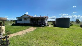 Rural / Farming commercial property for sale at 729 Davies Road Chinchilla QLD 4413
