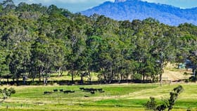 Rural / Farming commercial property for sale at 93 Settlers Boundary Rd Denmark WA 6333