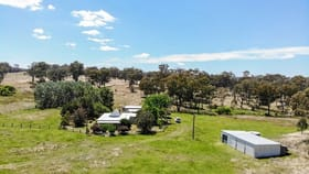 Rural / Farming commercial property for sale at 13497 Guyra Road Tingha NSW 2369
