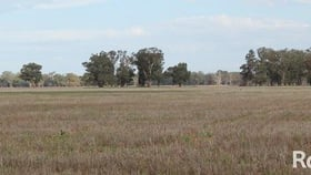 Rural / Farming commercial property for sale at 2218 The Bogan Way Forbes NSW 2871