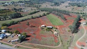 Rural / Farming commercial property for sale at 28941 Bruce Highway Childers QLD 4660