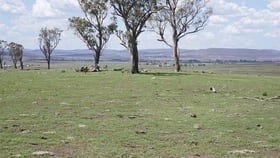 Rural / Farming commercial property for sale at 17892 New England Highway Mount Marshall QLD 4362