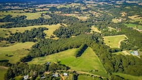 Rural / Farming commercial property for sale at 149 Friday Hut Road Coorabell NSW 2479