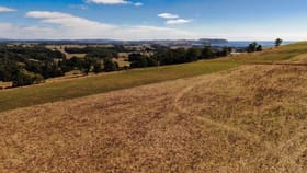 Rural / Farming commercial property for sale at 52 Dallas Road Somerset TAS 7322