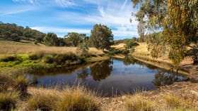Rural / Farming commercial property for sale at 20 Stoneleigh Lane Splitters Creek NSW 2640