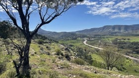 Rural / Farming commercial property for sale at Lot 1/Allot 12 Flinders Ranges Way Saltia SA 5433