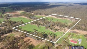 Rural / Farming commercial property for sale at Land at Millers Flat Road Whipstick VIC 3556