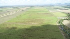 Rural / Farming commercial property for sale at 50 Wandarra Road Proserpine QLD 4800
