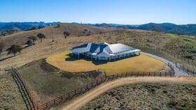 Rural / Farming commercial property for sale at 222 Roberts Road Mudgee NSW 2850