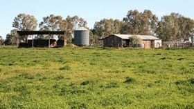 Rural / Farming commercial property for sale at 00 Minard Lane Bamawm VIC 3561