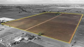 Rural / Farming commercial property for sale at 333 Third Street Merbein VIC 3505