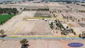 Rural / Farming commercial property for sale at 310 Andrews Road Kyabram VIC 3620