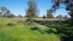 Rural / Farming commercial property for sale at 933 Nuable Road Narrabri NSW 2390