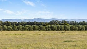 Rural / Farming commercial property for sale at 94 Majors Lane Keinbah NSW 2320
