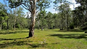 Rural / Farming commercial property for sale at 1163 Paddys Flat Road Tabulam NSW 2469