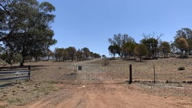 Rural / Farming commercial property for sale at Lot 2 Gunning Ridge Road Forbes NSW 2871