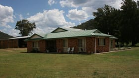 Rural / Farming commercial property for sale at Yarrawa NSW 2328
