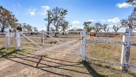 Rural / Farming commercial property for sale at 736 Clifton Allora Road Spring Creek QLD 4361