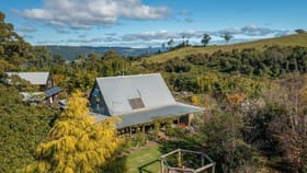 Rural / Farming commercial property for sale at Lot 184, 1025 Ponsford Road Comboyne NSW 2429