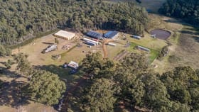 Rural / Farming commercial property for sale at 190 Gums Road Mountain River TAS 7109